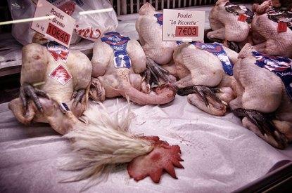 Beaune-market-bressi-chicken_Snapseed