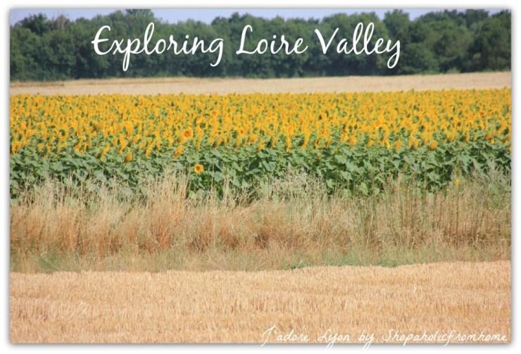 Visit Loire Valley