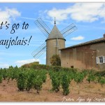 Visit Beaujolais for the Best French Wine Experience