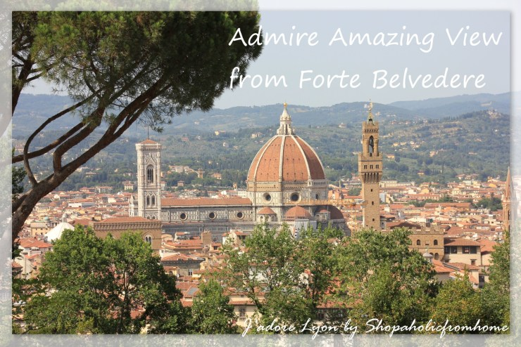 Admire view from Forte Belvedere