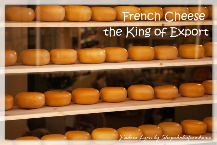 Cheese-the-king-of-export