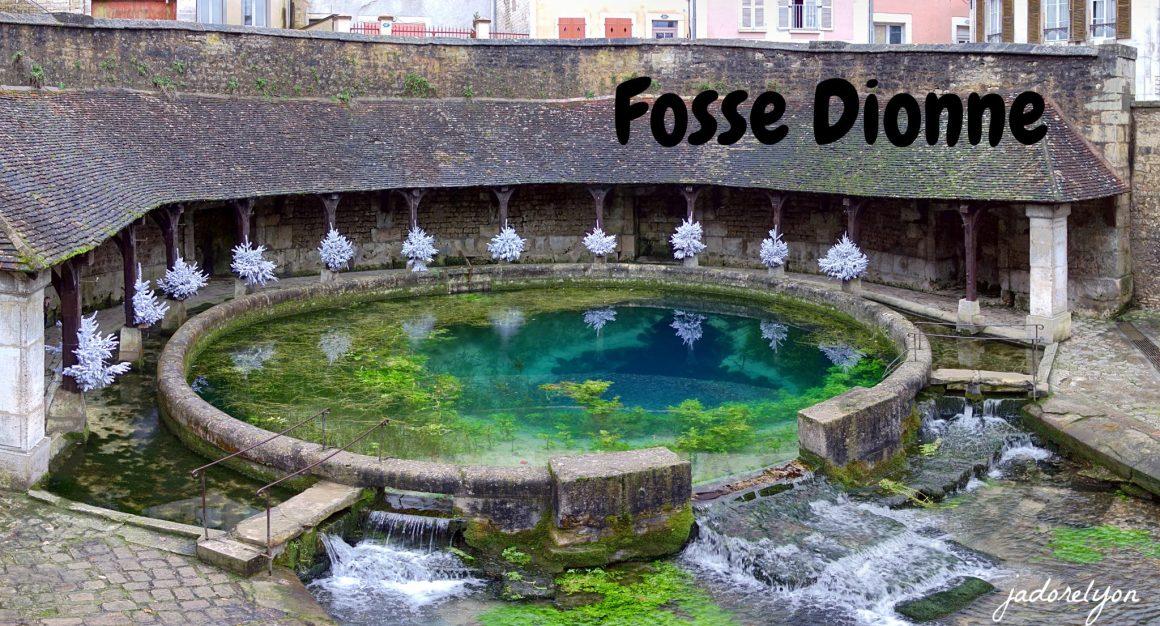 Fosse Dionne, Tonnerre.