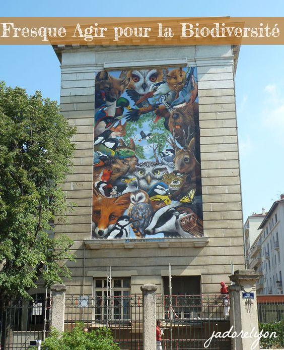 Fresque Agir pour la Biodiversité