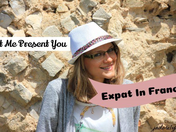 Let Me Present You Expat In France