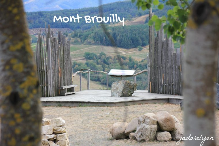 Visit Mont Brouilly around Lyon with a baby