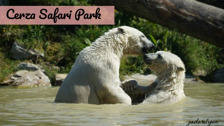Cerza Safari Park