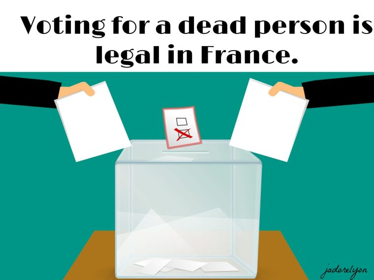 Voting for a dead person.