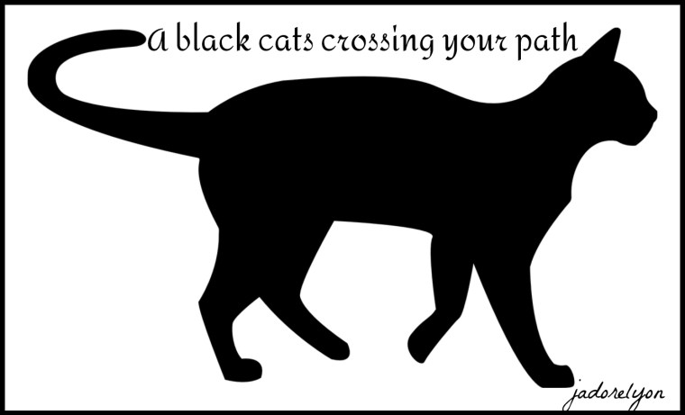 Watch out for the black cats crossing your patht-1185453_1280