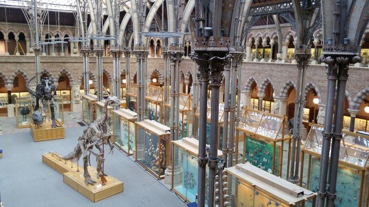 oxford-museum-of-natural-history