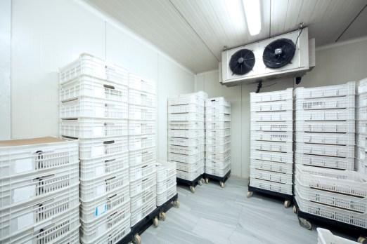 Meat Storage at -30 Celcius