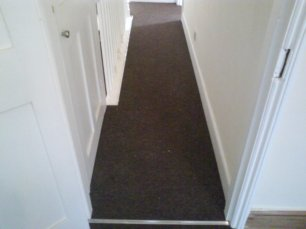 Rental Carpet
