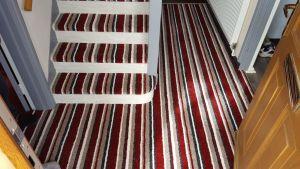 French Cap - Carpet x2 Colours