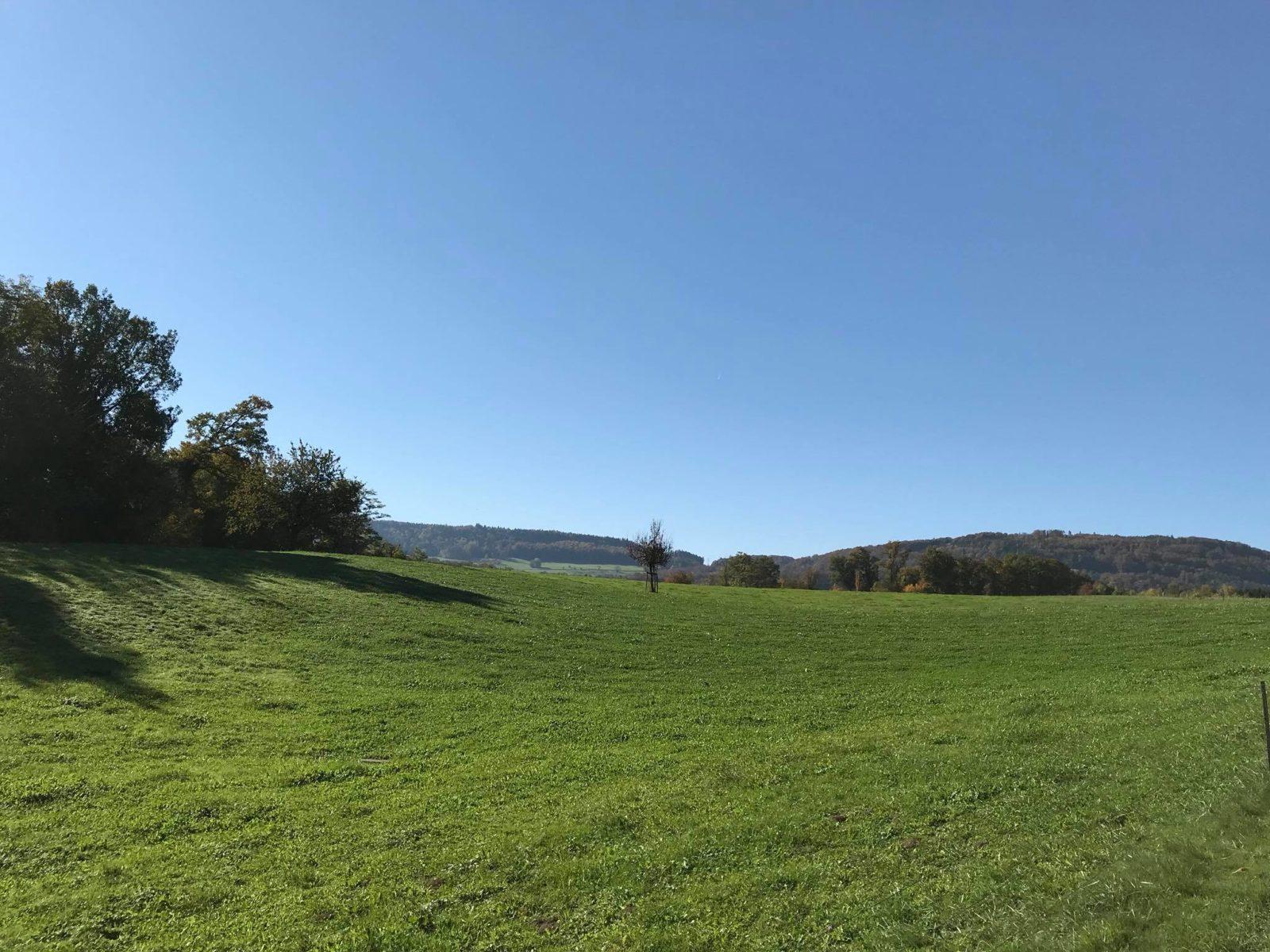 Schlatthof