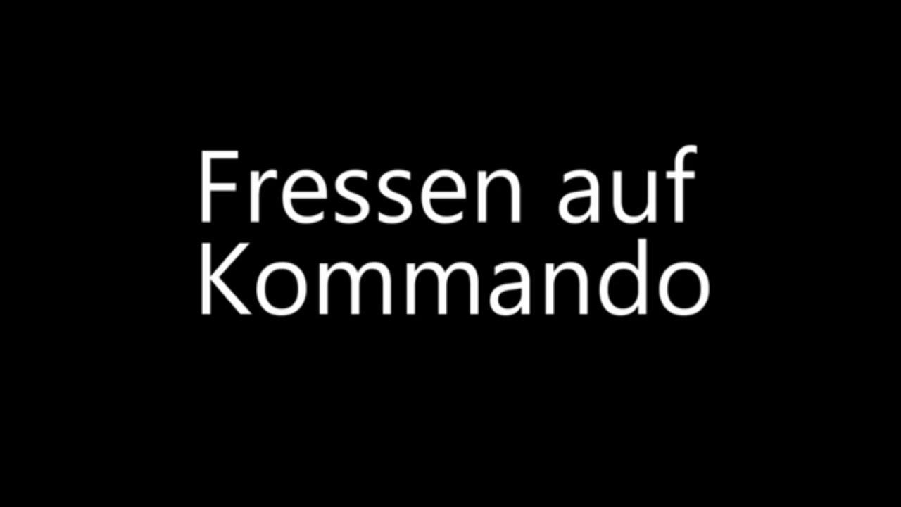 Rauhaardackel – Fressen auf Kommando
