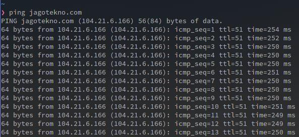 command linux ping internet