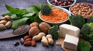 Protein-sources Protein sources