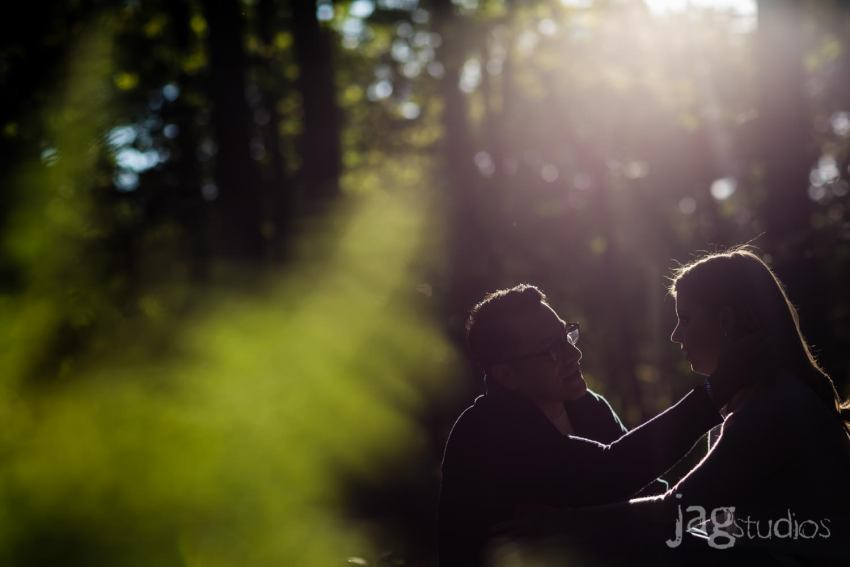 Litchfield engagement JAGstudios forever session