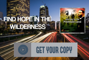 Buy Journey to the Promised Land