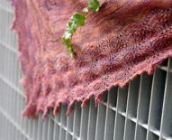 Painted Plumes shawl
