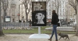 Ce panneau d'affichage analyse l'urine de votre chien pour vérifier son état de santé