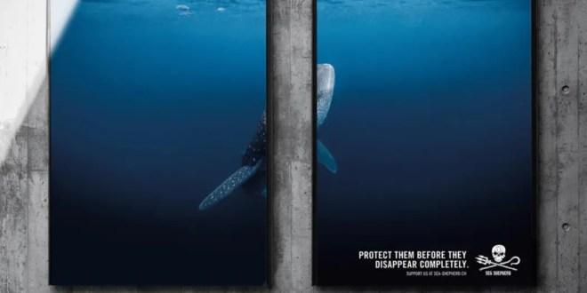 Suisse : Une campagne choc pour protéger les espèces menacées !