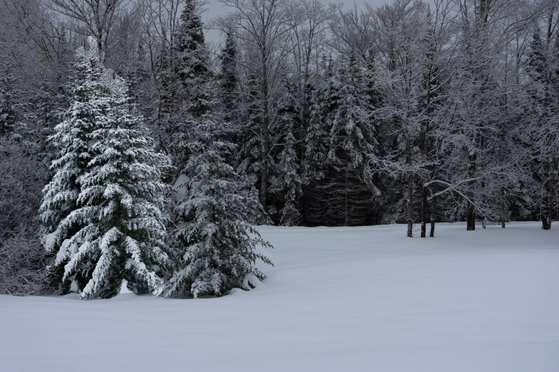 upper peninsula winter