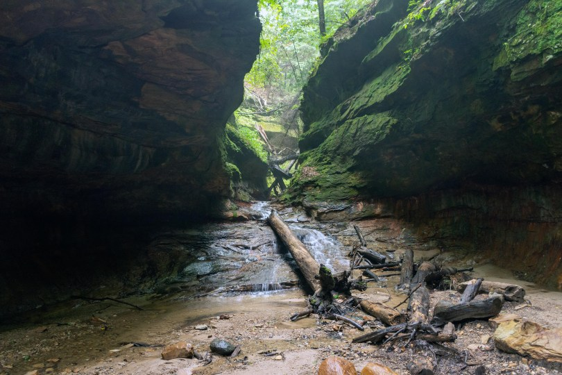 turkey run trail