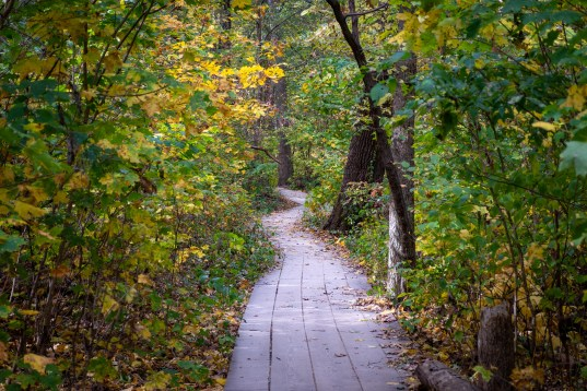starved rock trail