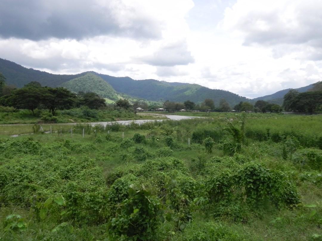 Chiangmai-trek
