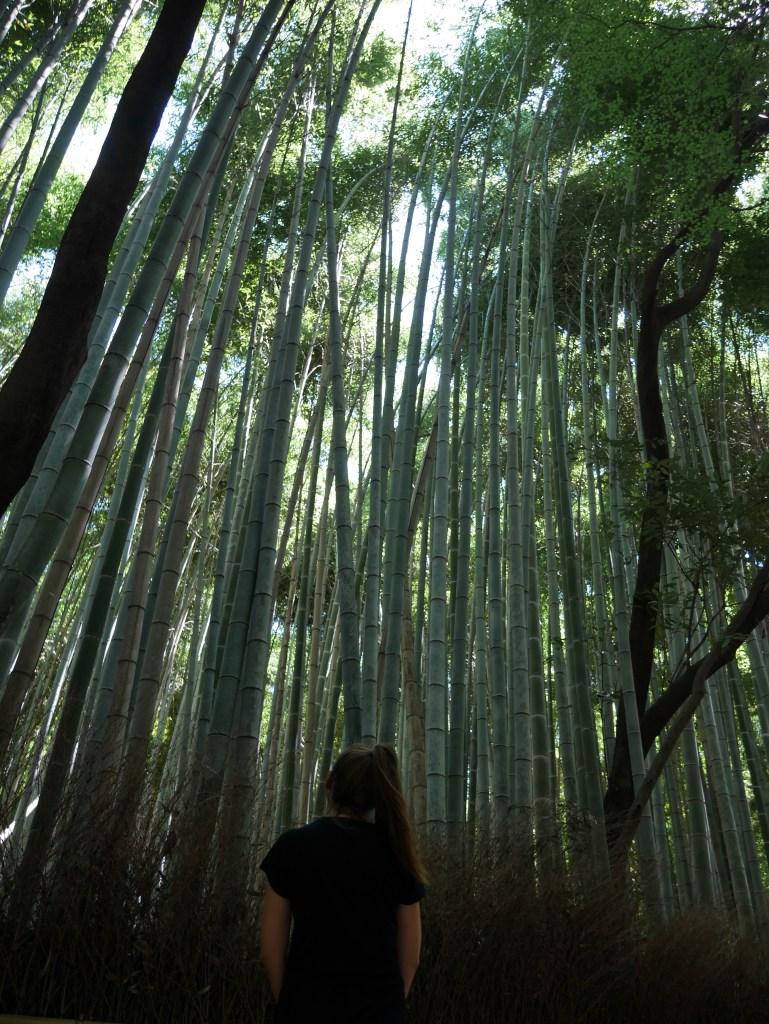 bambouseraie-arashiyama-kyoto