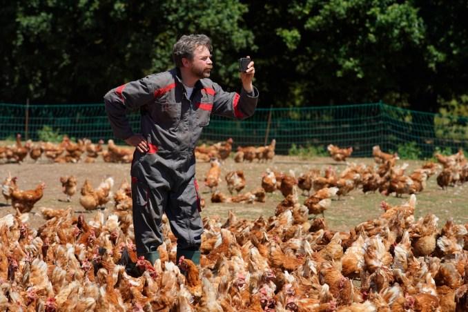 Raymond et ses poules (Guillaume de Tonquédec)