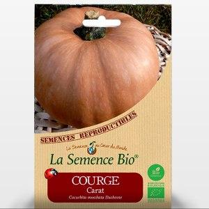 Courge carat bio - Sachet de graines du potager - 182
