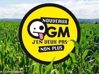 OGM J'en veux pas non plus © Greenpeace