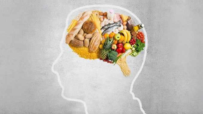 Étude : catégorisation et propriétés des aliments.