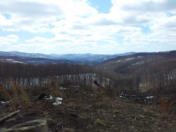 beautiful vistas from atop a mountain in Brimstone Recreation Park