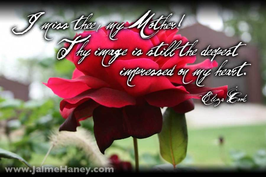 Rose with quote I miss thee my mother! Thy image is still the deepest impressed on my heart