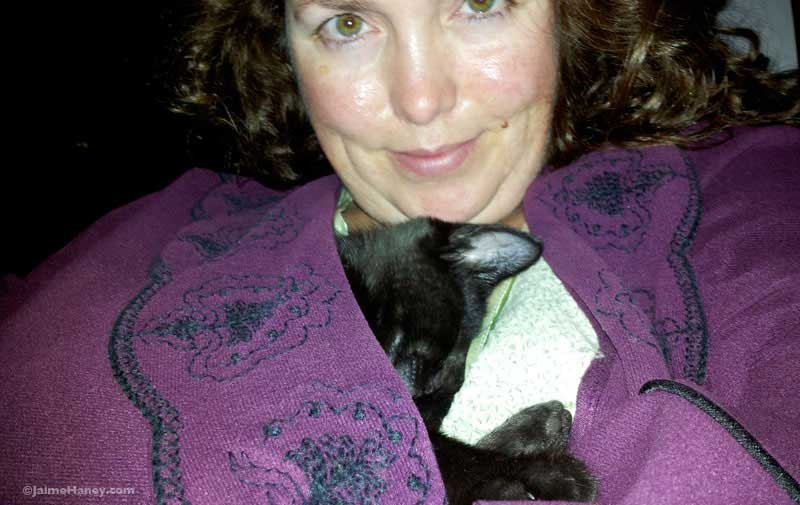 Black kitten curled up sleeping inside woman's purple robe