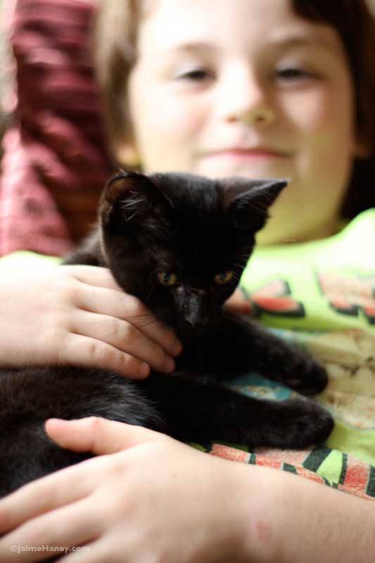 boy holding black kitten
