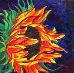 Sunflower with vivid petals that look like flames licking the dark blue sky