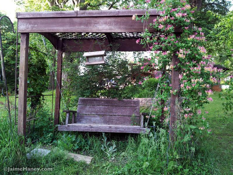 swing covered in honeysuckle vines