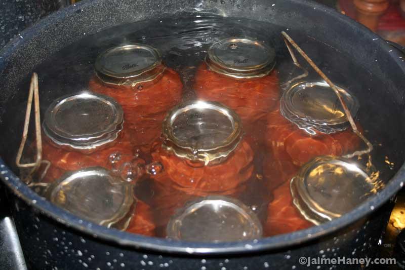 jars of salsa in a hot bath