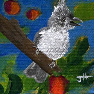 4x4 painted baby tufted titmouse