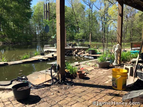 Studio Gardens koi pond right side