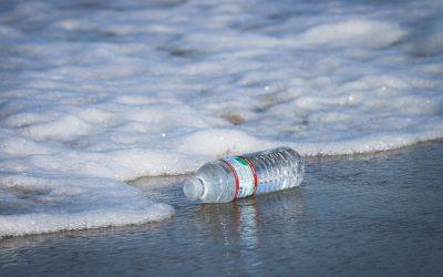 Quels sont les impacts néfastes de la bouteille plastique