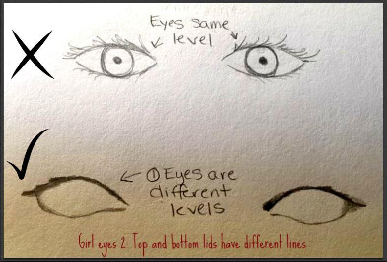 correct eye outline drawing