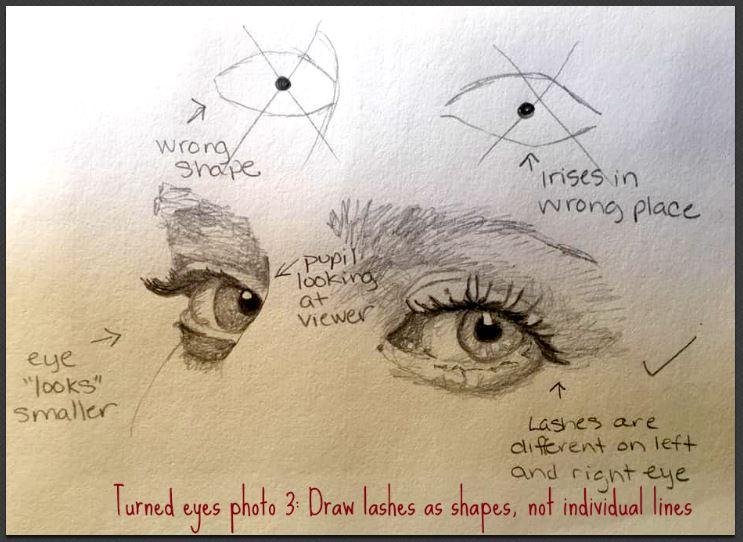 turned eyes with lashes
