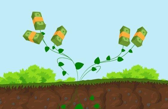 faire pousser de l'argent