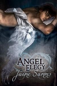 Book Cover: Angel Elegy