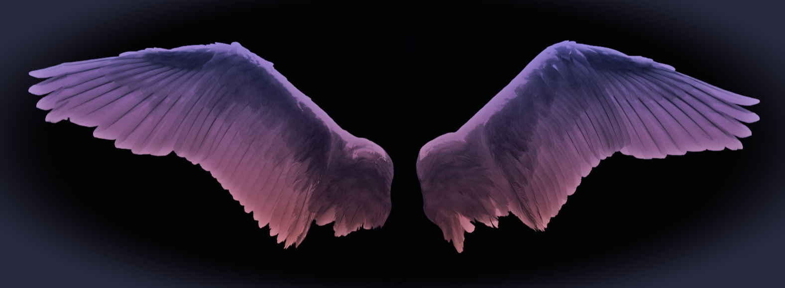 Angels, Maybe – New Starts, Plans, Ideas.