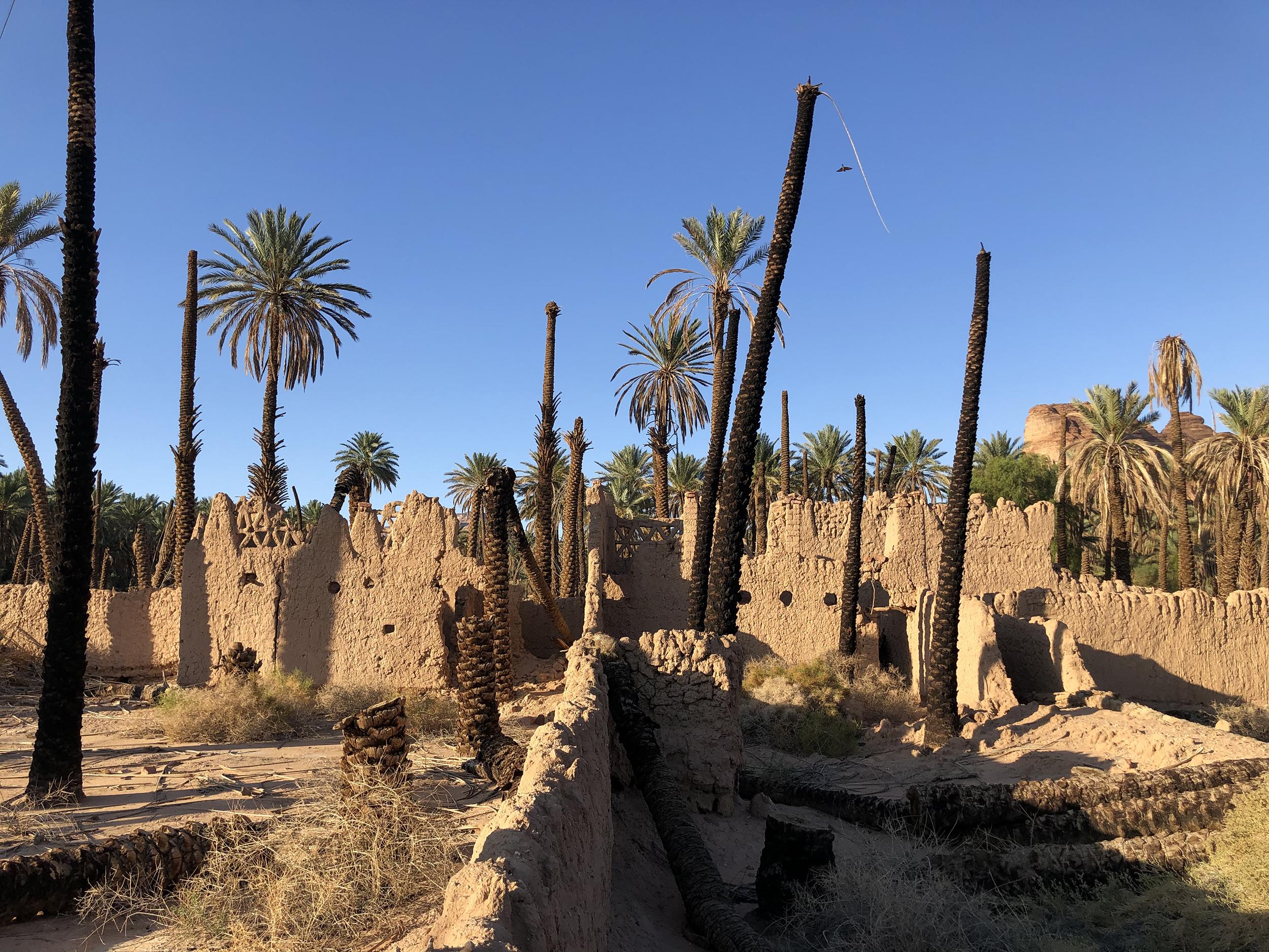 Al Ula Oasis Semi-detached mud house saudia